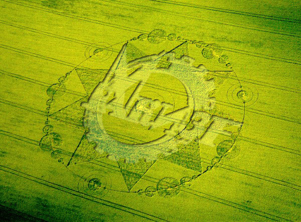 Crop Circle Contact - Cerchi nel grano